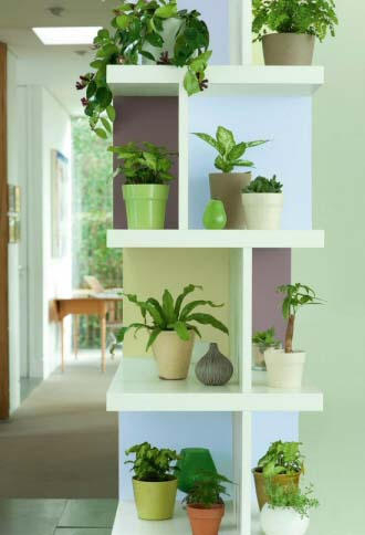 50 plants that clean the air our house plants for Decoracion de interiores medellin