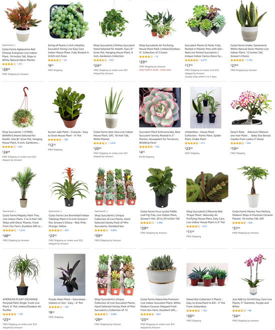 Houseplants For Sale at Amazon